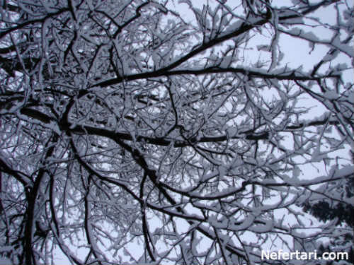 cold weather effect on skin